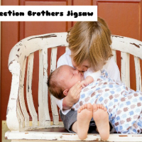 Affection Brothers Jigsaw