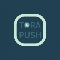 TORA PUSHhttps://uncached.gamemonetize.com/bb2n0jn